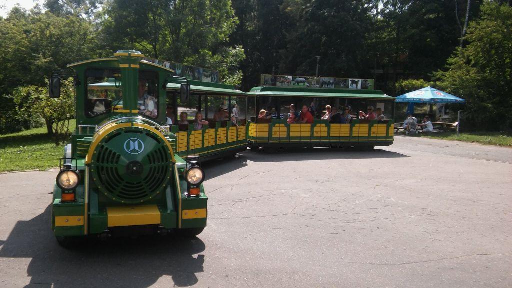 Wycieczka autokarowa do Palmiarni i ZOO w Poznaniu